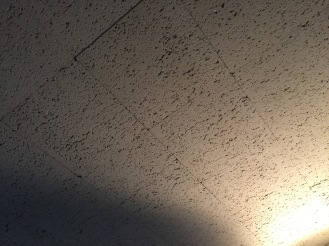 Acoustical Tile Ceiling